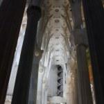 Kreuzgewölbe der Sagrada Familia (c) Foto von Susanne Haun