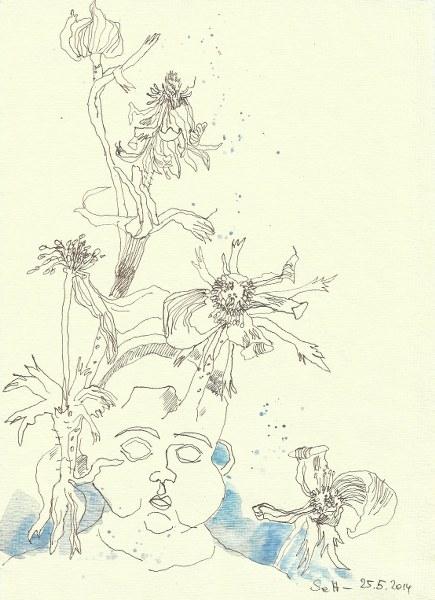 Anemone Version 1 (c) Zeichnung von Susanne Haun
