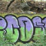 Graffiti auf dem gesprenten Bunker im Humboldthain passt sich nahtlos in die Natur ein (c) Foto von Susanne Haun