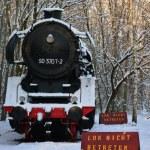 Lokomotive Südgelände (c) Foto von M.Fanke