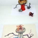 Fertig Stillleben mit Muschel und Eichel auf Hahnemühle Antik Ingres (c) Zeichnung von Susanne Haun