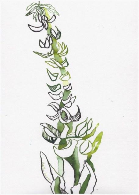 Weggegossen No. 23 b (c) Zeichnung von Susanne Haun