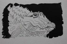 Krokodil - 11 x 18 cm - Tusche auf Hahnemühle Burgund (c) Zeichnung von Susanne Haun