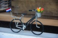 Im Tulpenmuseum in Amsterdam (c) Foto von M. Fanke