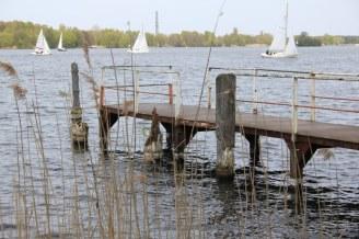 Nieder-Neuendorfer See (c) Foto von Susanne Haun