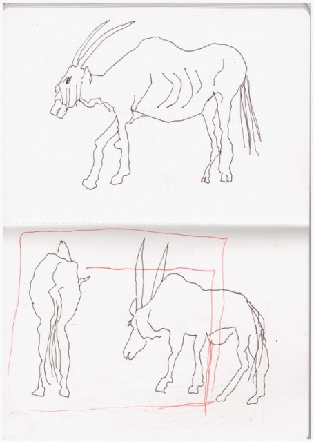 Tiere mit Tusche zeichnen - die Antilope mit Kompostionshinweis (c) Zeichnung von Susanne Haun