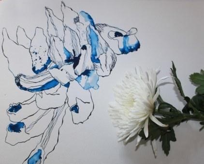 Entstehung Chrysamtheme (c) Foto und Zeichnung von Susanne Haun