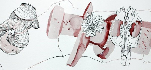 Freundschaft - Vanitas Stillleben Vers. 3 - 20 x 50 cm - Hahnemühle Aquarellkarton (c) Zeichnung von Susanne Haun