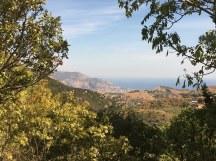 Blick auf Palermo von San Martino della Scala aus(c) Foto von Susanne Haun