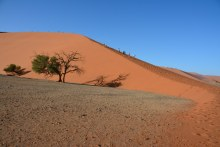 Namibia - Duene 45 und Sossusvlei (c) Foto von M.Fanke