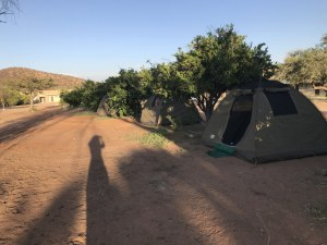 Eine Wohltat - Zitronenbäume nahe dem Zelt (c) Foto von Susanne Haun