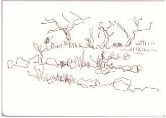Die Landschaft im National Park verändert sich wenig (c) Zeichnung von Susanne Haun