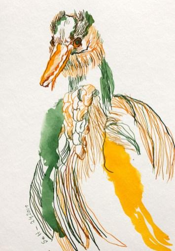 Paradiesvogel in gruen, gelb, Zeichnung von Susanne Haun, 17 x 24 cm (c) VG Bild-Kunst, Bonn 2019