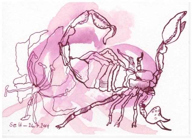 Gloriosa ist die Blume des Skorpions, 12 x 17 cm, Aquarellkarton, Zeichnung von Susanne Haun (c) VG Bild-Kunst, Bonn 2019