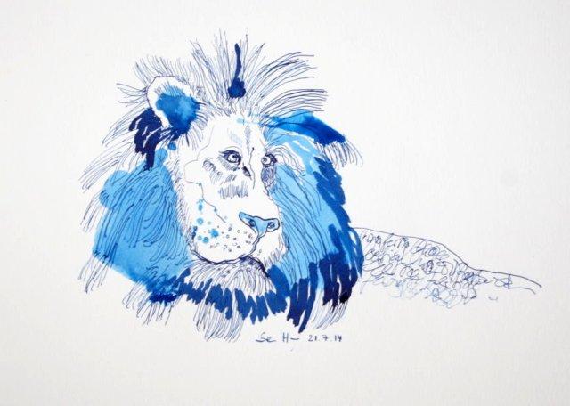 Fauler Löwe im Glück, 23 x 31 cm, Tusche auf Aquarellkarton, Zeichnung von Susanne Haun (c) VG Bild-Kunst, Bonn 2020