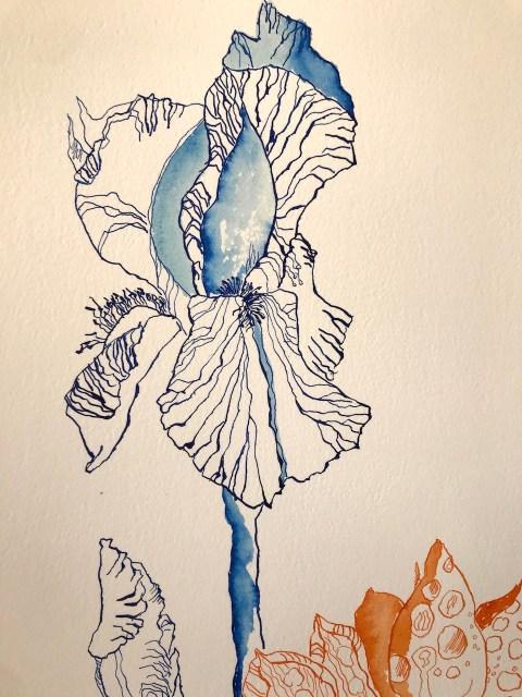 Detail aus meinen Gedanken, 76 x 56 cm, Tusche auf Hahnemuehle Leonardo Büttenpapier, Zeichnung von Susanne Haun (c) VG Bild-Kunst, Bonn 2020