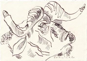 Tagebucheintrag 11.09.2020, Griesgrahm ohne Farbe, 20 x 15 cm, Tinte und Buntstift auf Silberburg Büttenpapier, Zeichnung von Susanne Haun (c) VG Bild-Kunst, Bonn 2020