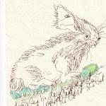 Tagebucheintrag 27.09.2020, Häschen in der Grube, 15 x 10 cm, Tinte und Buntstift auf Silberburg Büttenpapier, Zeichnung von Susanne Haun (c) VG Bild-Kunst, Bonn 2020