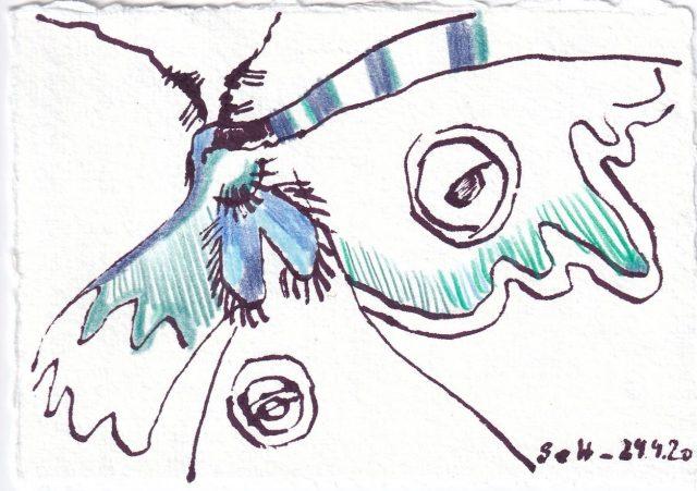Tagebucheintrag 29.09.2020, Eine kleine Motte in Farbe, 20 x 15 cm, Tinte und Buntstift auf Silberburg Büttenpapier, Zeichnung von Susanne Haun (c) VG Bild-Kunst, Bonn 2020