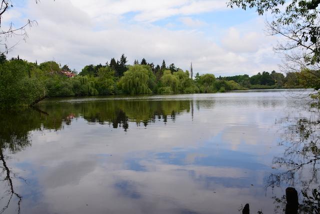 Impressionen aus dem Tegeler Fließ (c) M.Fanke