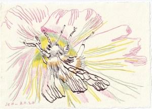 Tagebucheintrag 08.11.2020, Befruchtungsritual, 20 x 15 cm, Tinte und Buntstift auf Silberburg Büttenpapier, Zeichnung von Susanne Haun (c) VG Bild-Kunst, Bonn 2020