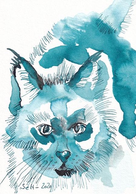 2 Katze in Blau, Zeichnung von Susanne Haun, Tusche auf Aqaurellkarton, 12 x 17 cm (c) VG Bild-Kunst, Bonn 2021