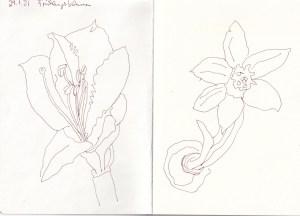 Skizzenbuch Susanne Haun 29.1.21 und 13.2.21 (c) VG Bild-Kunst, Bonn 2021