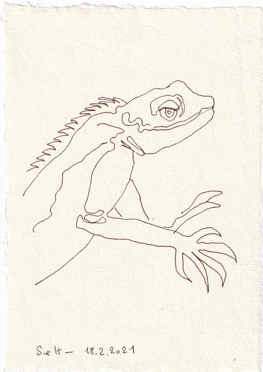 Tagebucheintrag 18.02.2021, Vers. 1, Echse, 20 x 15 cm, Tintet auf Silberburg Büttenpapier, Zeichnung von Susanne Haun (c) VG Bild-Kunst, Bonn 2021