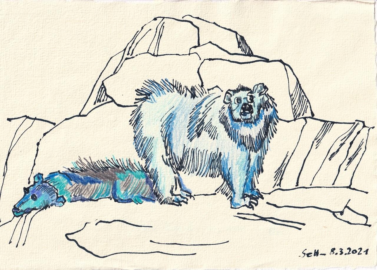 Tagebucheintrag 08.03.2021, Ich möchte ein Eisbär sein, 20 x 30 cm, Tinte und Buntstift auf Silberburg Büttenpapier, Zeichnung von Susanne Haun (c) VG Bild-Kunst, Bonn 2021