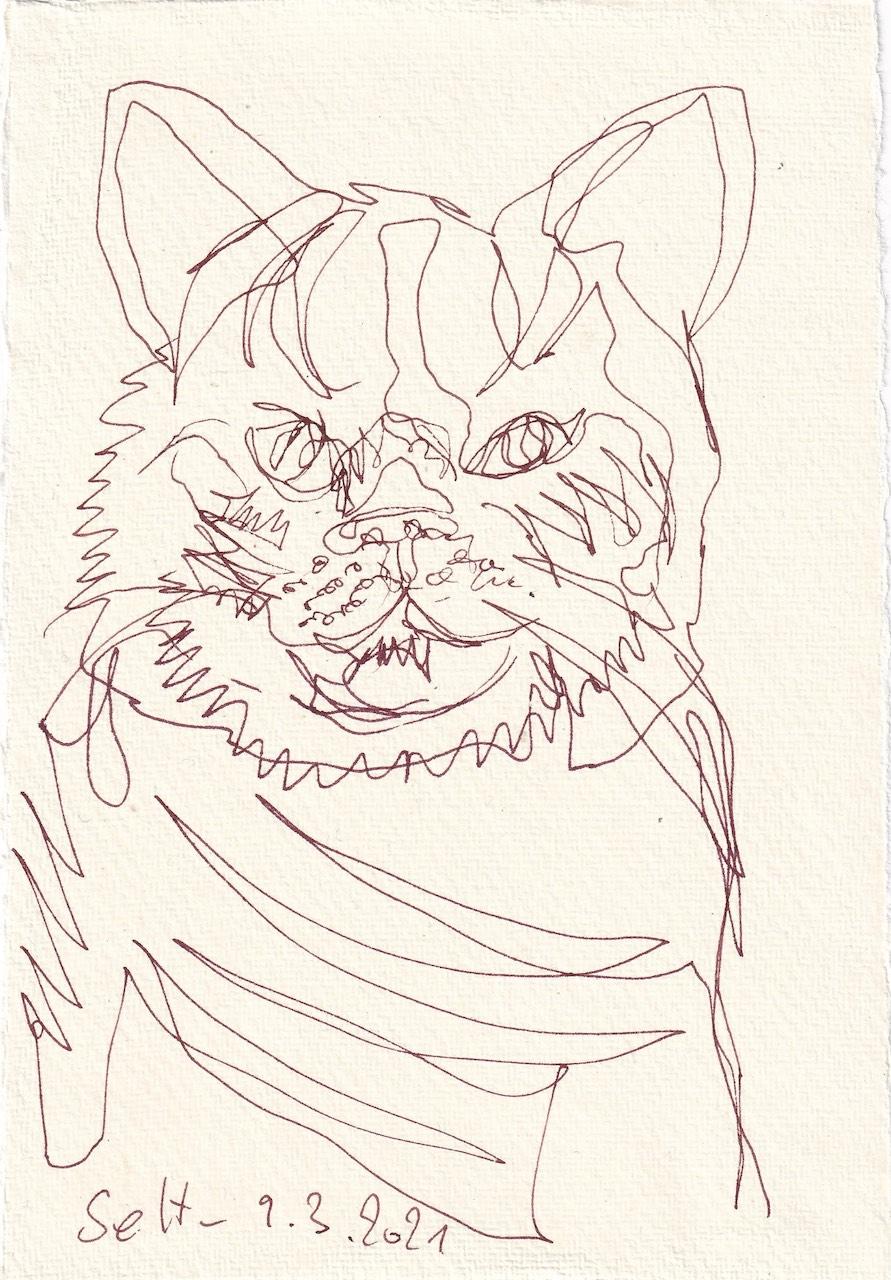 Tagebucheintrag 09.03.2021, Katzen Bewegung, Version 3, 20 x 15 cm, Tinte auf Silberburg Büttenpapier, Zeichnung von Susanne Haun (c) VG Bild-Kunst, Bonn 2021