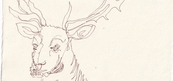 Tagebucheintrag 27.02.2021, Wird das ein Zwoelfender, Version 2, 20 x 15 cm, Tinte auf Silberburg Büttenpapier, Zeichnung von Susanne Haun (c) VG Bild-Kunst, Bonn 2021