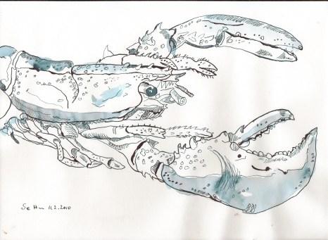 Blauer Hummer - Zeichnung von Susanne Haun - Tusche auf Bamboo Papier - 20 x 30 cm