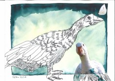 6 Gänse - 30 x 40 cm - Tusche auf Bütten (c) Zeichnung - Collage von Susanne Haun