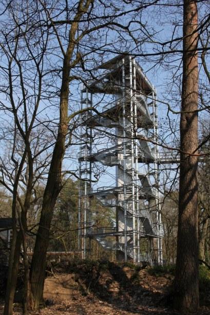 Beelitz Heilstätten - Baumkronenpfad (c) Foto von Susanne Haun