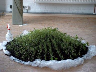 Installation, Wasser, Erde...2004