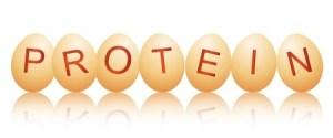 eggs-protein-12739440_s
