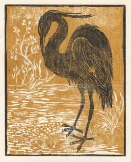 Siegel   Aesop's Bird