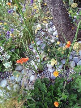 Pebble mulch