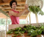 Ted Dobson Equinox Farms