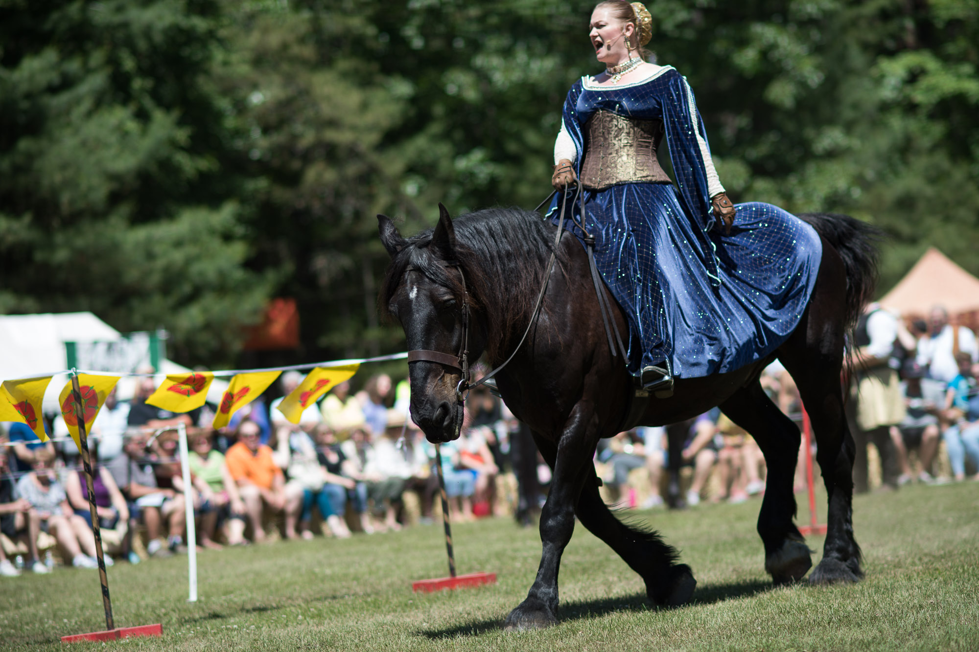 Announcer at a joust performance during a Renaissance Festival.