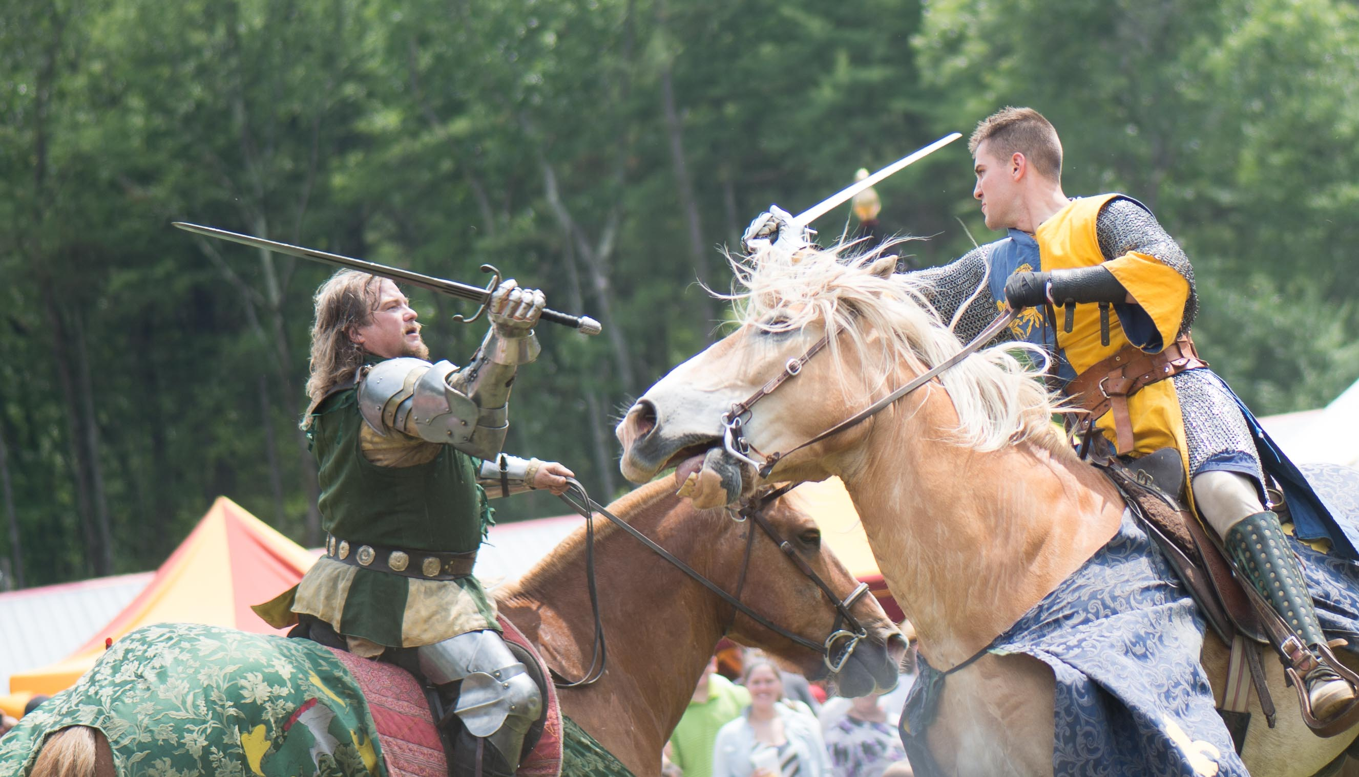 Palomino horse during a joust fight at a Renaissance Festival.