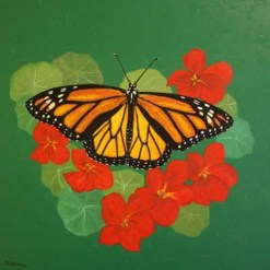 Monarch Butterfly Print by Susan Sternau