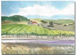 Sonoma Vineyard by Susan Sternau, holiday art show