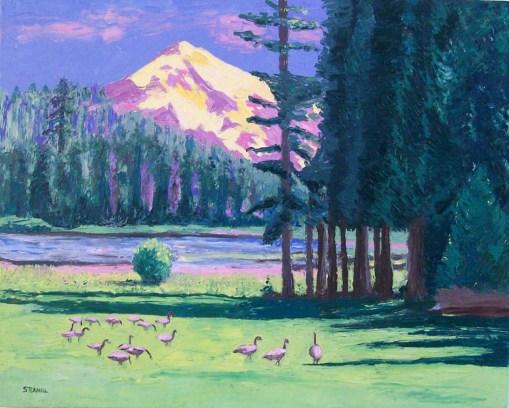 Duck Lake Oil Painting by Susan Sternau