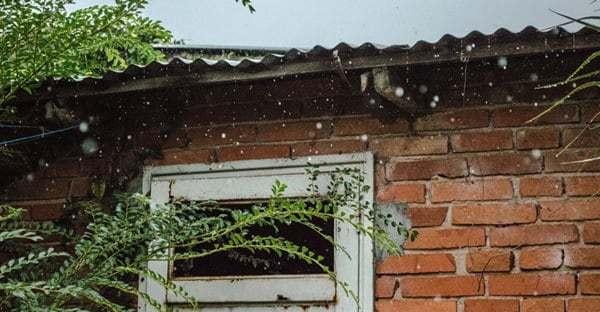 spring-home-maintenance-susan-terry