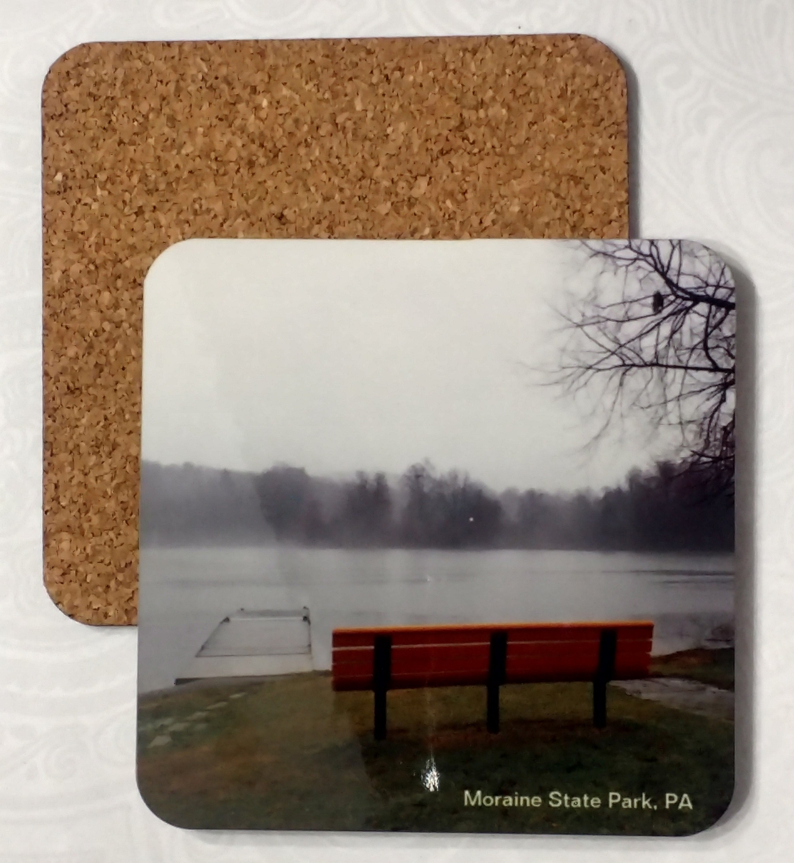 Moraine State Park shore Coaster by Susan Walker