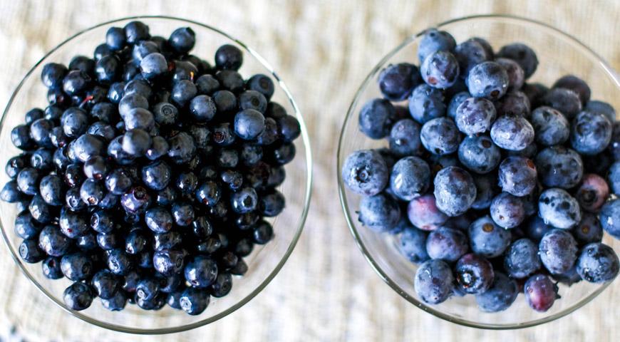 allergisk mot blåbär