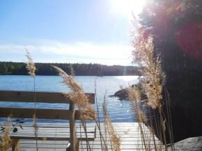 An der Hütte von Lillomarka - Finnland von seiner besten Seite