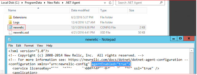 New Relic Agent Enabled