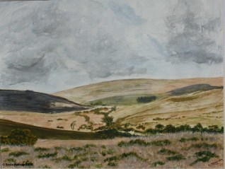After swaling, Dartmoor